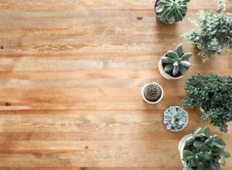 Hvilke varianter af trægulve findes der, og hvad bør jeg gå efter?